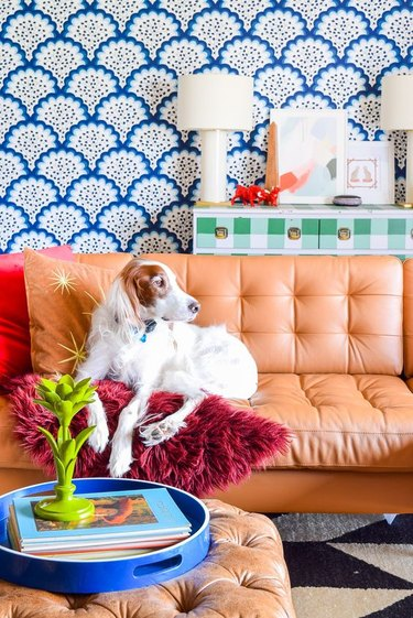 Eclectic blue living room with blue patterned wallpaper