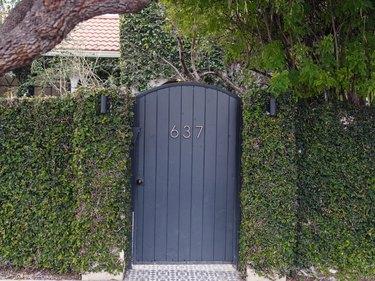 exterior shot of a hedge and door
