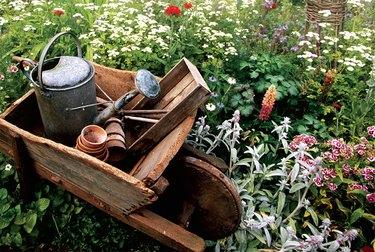 rustic wheelbarrow and watering can