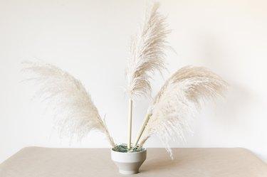 Pampas Grass Arrangement