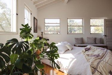 Plant in boho, earthy bedroom