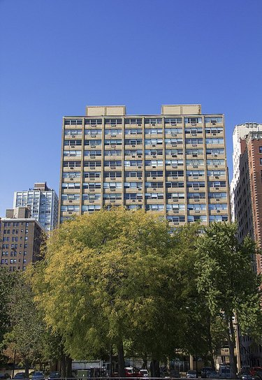 Promontory Apartments by  Ludwig Mies van der Rohe and Black woman architect Georgia Harris Brown