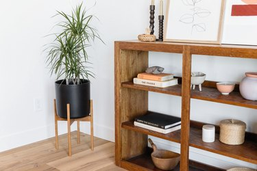 Modern planter with plant next to bookshelf