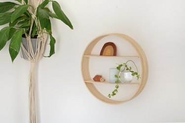 Circular wall shelf with small trinkets and hanging plant on wall.