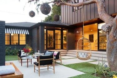 Japanese elm tree in backyard of modern home