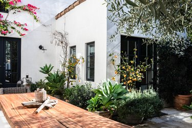 Back patio of home with dining table and lemon tree