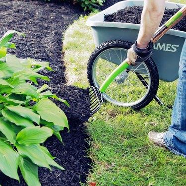 Installing garden mulch