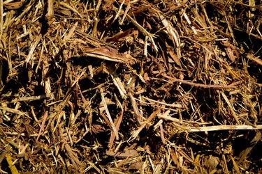 Garden mulch.