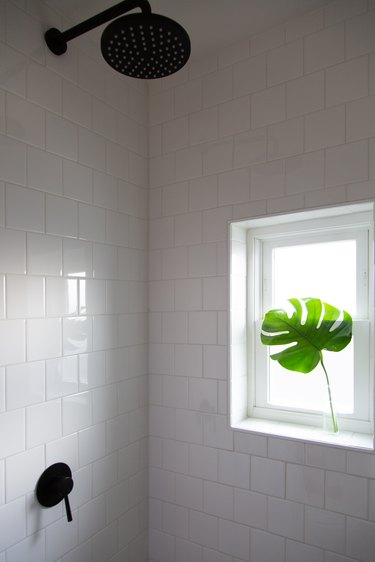 The window brought in much needed natural light.