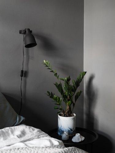 dark gray bedroom with black fixtures and plants