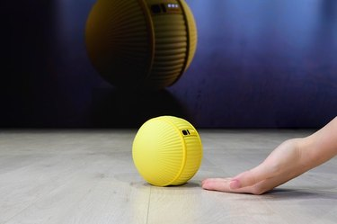 person with hand outstretched on floor towards yellow ball