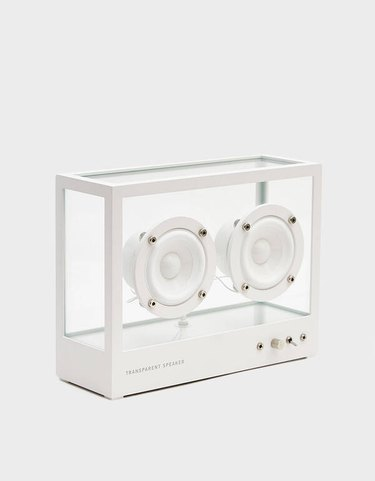 need supply transparent speaker