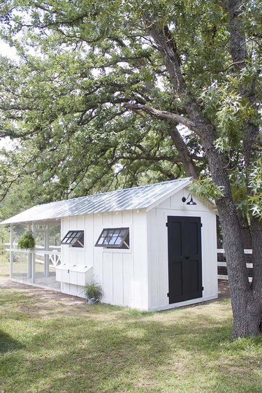 Modern shed with modern farmhouse details and chicken coop