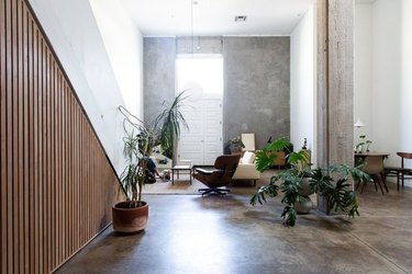 family room flooring ideas with polished concrete floors and plants