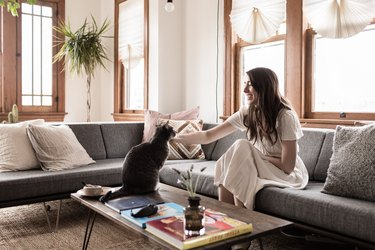 Sustainable-Meets-Sentimental in This Creative Couple's Sunny One-Bedroom Apartment