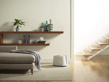 Honeywell humidifier in minimalist living space