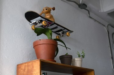Skateboard mounted on wall with potted plants below