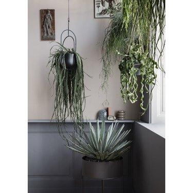 geometrical hanging planter