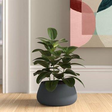 minimalist floor planter