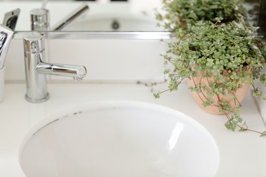 close up of a sink, faucet and plant