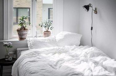 white bedroom ideas with houseplants
