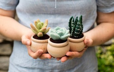 felt succulents in pots