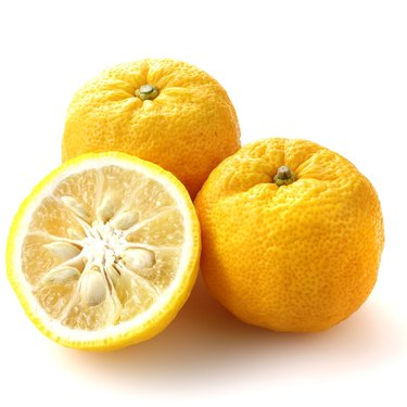 Three yellow Yuzu fruit from Japan