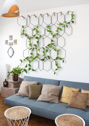 Pothos plant hanging off wire artwork