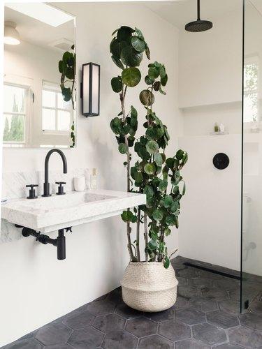 Rectangular sconce bathroom vanity lighting ideas in bathroom with cement honeycomb tile and walk-in shower