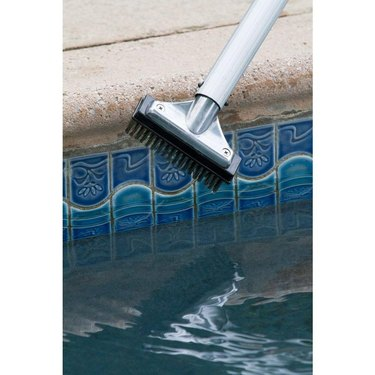 Small 5-inch stainless steel pool brush.
