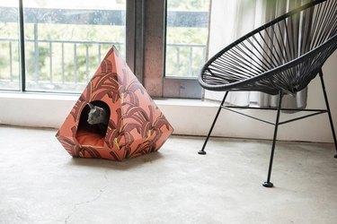 cat diamond
