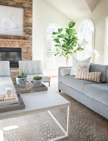 beige living room idea with gray sofa by elizabeth lawson design