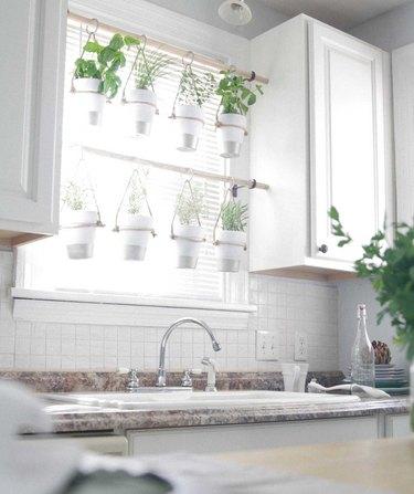 hanging herbs in kitchen window