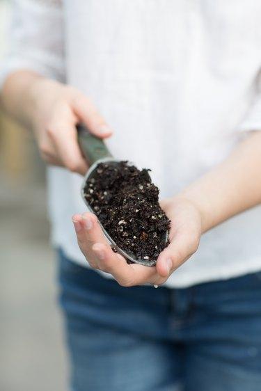 Use premium soil when planting an herb garden
