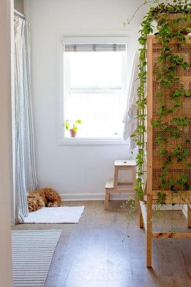 bathroom with wood linen cabinet, green plant, wood step stool, open window with plant in windowsill, orange cat, vinyl wood floor