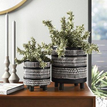 allmodern 10 planters