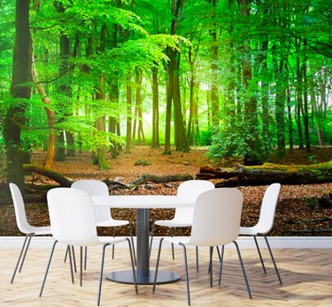 Green forest wallpaper with white table and chairs