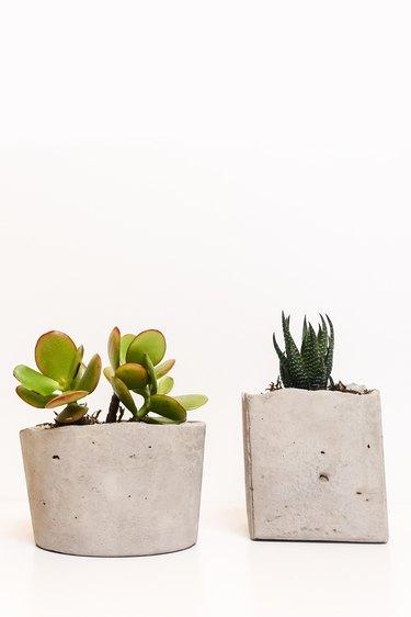 DIY Modern Succulent Planter Tutorial Using Concrete