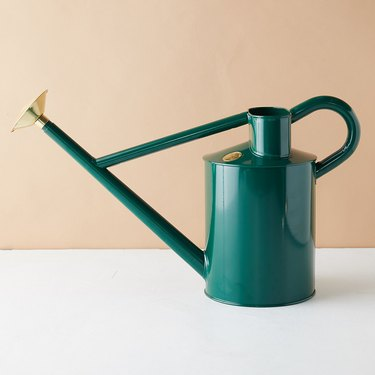 Dark teal watering can with brass details