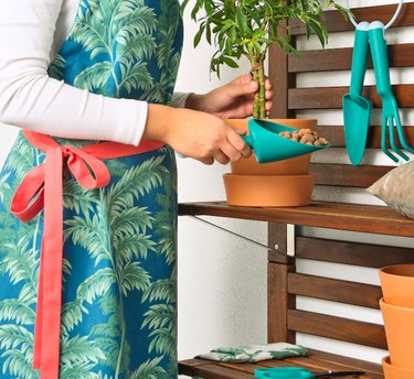 woman holding gardening tool while wearing floral apron