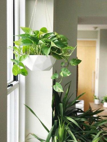 White geometric hanging planter
