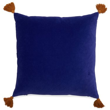 """Velvet Decorative Throw Pillow with Tassels, 20x20"""" by Drew Barrymore Flower Home"""