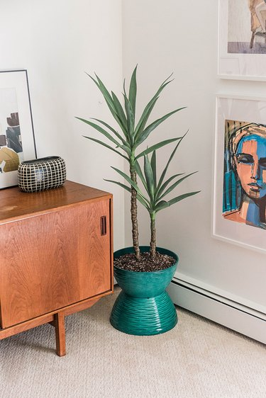 Style the finished midcentury-inspired planter wherever you'd like!