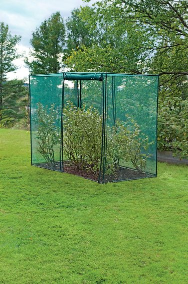 Crop cage