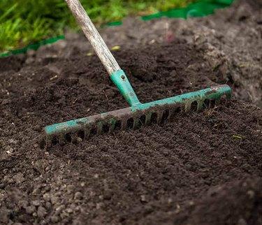 Raking and planting seed.