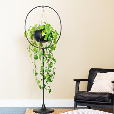 black plant stand with plant near black chair with white pillow