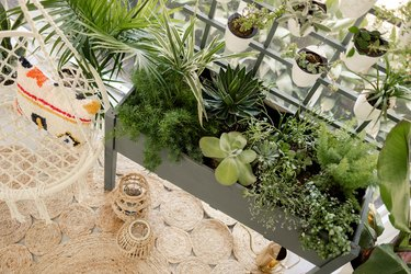 Overhead view of finished planter box full of plants