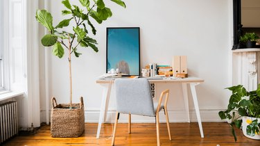 A white desk next to a towering plant