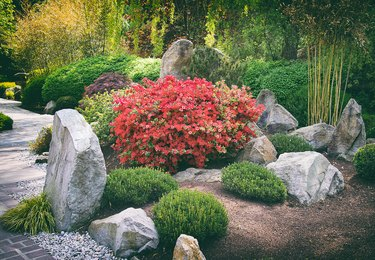 Japanese rock garden.