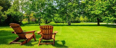 Lawn with lawn chairs.